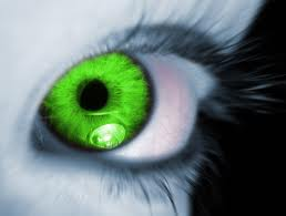 Green Envy Eye